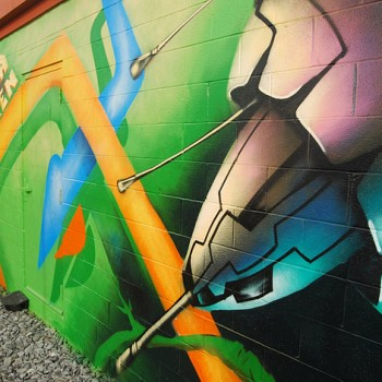 WKN/murals. Takoma Green - 314 Carroll St. NW - Photo by Ann Cameron Siegal