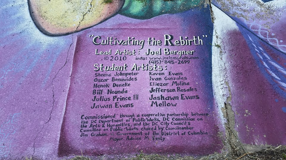 rebirth06